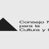 Encuesta online del CNCA tiene más de 2 mil participaciones