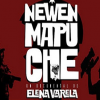 Documental Newen Mapuche en Cine Arte Alameda